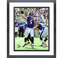 Baltimore Ravens Photos & Wall Art