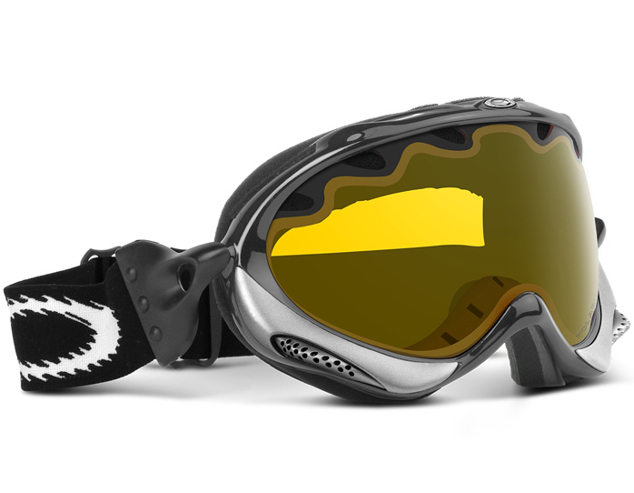 Oakley Polarized Snow Goggles