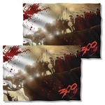 300 Cliff FB Pillow Case