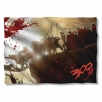 300 Cliff Pillow Case