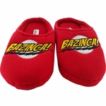 Big Bang Theory Bazinga Slippers