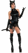 Catwoman Ame-Comi Adult Costume
