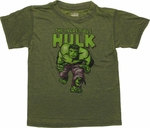 Incredible Hulk Under Name Burnout Juvenile T Shirt