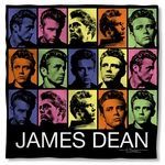 James Dean Color Block Bandana