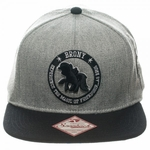 My Little Pony Brony Hat