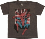 Spiderman Leap Sun Gray Juvenile T Shirt