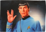 Star Trek Spock Salute Sublimated Pillow Case