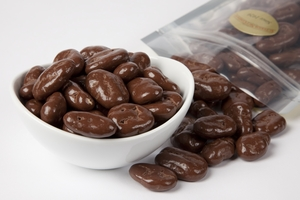 Chocolate Covered Pecans (1 Pound Bag) - Sugar Free