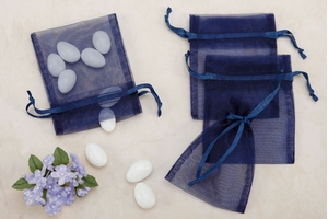 Navy Sheer Organza Party favor Bags (Pack of 10)