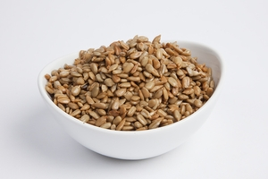 Unsalted No Shell Sunflower Seeds (5 Pound Bag)
