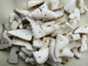 12x25mm Brown and White Sea Shells tooth like in 80 or 160 Gram bags