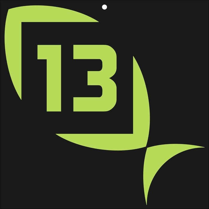 13 fishing logo decal lime green medium tackledirect