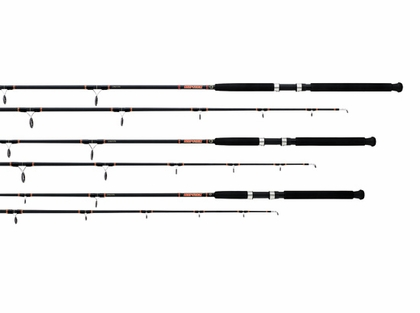 Daiwa Beefstick BT Spinning Boat Rods