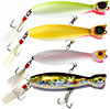 Guides Secret Shore Catch Baby Bottle Pop Lures