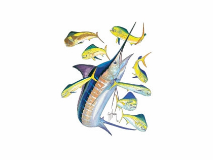 Guy Harvey Marlin / Dorado T-Shirt
