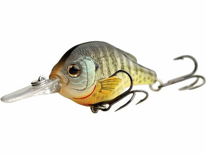 LIVETARGET Lures Bluegill Crankbait BG70 Medium Dive 2.75in