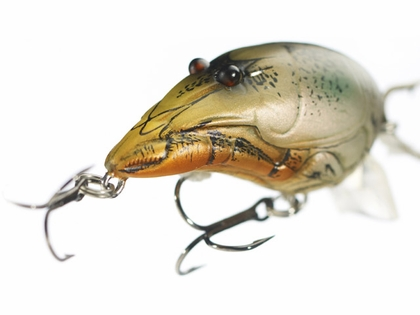 LIVETARGET Lures Crawfish Crankbait C52S Shallow Dive 2 1/8""