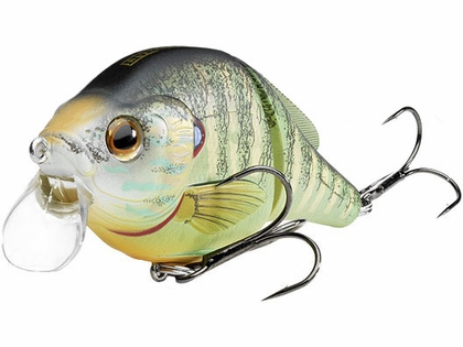 LIVETARGET Lures Pumkinseed Wakebait PSW95T Shallow Dive 3.75in