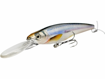LIVETARGET Lures Rainbow Smelt Jerkbait RS115S Shallow Dive 4-1/2in