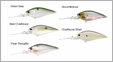 Lucky Craft Flat CB Crank Bait Lures