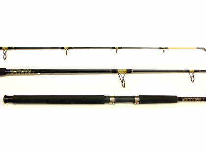 Pinnacle PTG1202BWSM 2pc Big Water Spinning PowerTip Gold Fishing Rod