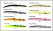 Savage Gear 3D Real Eel Slug Lures