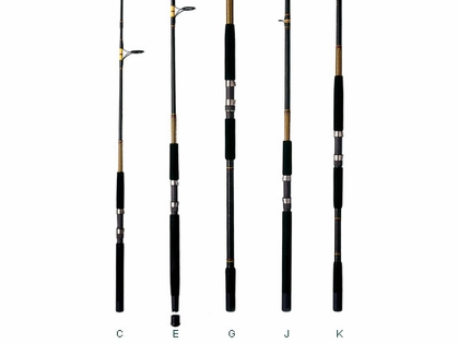 Shakespeare BWS 1100 110 Ugly Stik Bigwater Spinning Rod
