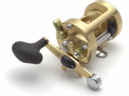 Shimano Calcutta B CT700B Fishing Reel