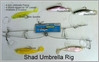 Sportfish 4 Shads Umbrella Rig