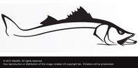 Steelfin Snook Decals Large