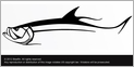 Steelfin Tarpon Decals - Small