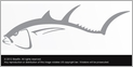 Steelfin Tuna Decals - Large