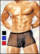 Men's Sheer Pouch Shorts
