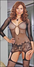 Queen Size Fishnet Garter Dress & Stockings