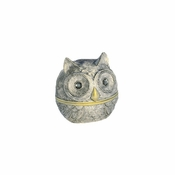Owl Eyes Box Ivory