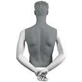 Male Arms - Hands Behind Back