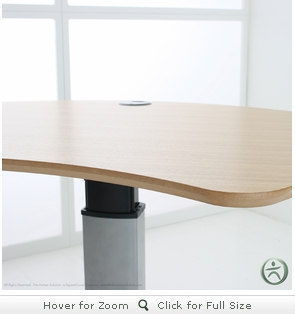 Conset 501-19 8X120 Design Laminate Electric Sit-Stand Desk