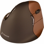Evoluent Vertical Mouse 4: Small Right Hand Wireless Mouse VM4SW