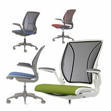 Humanscale Diffrient World Chairs