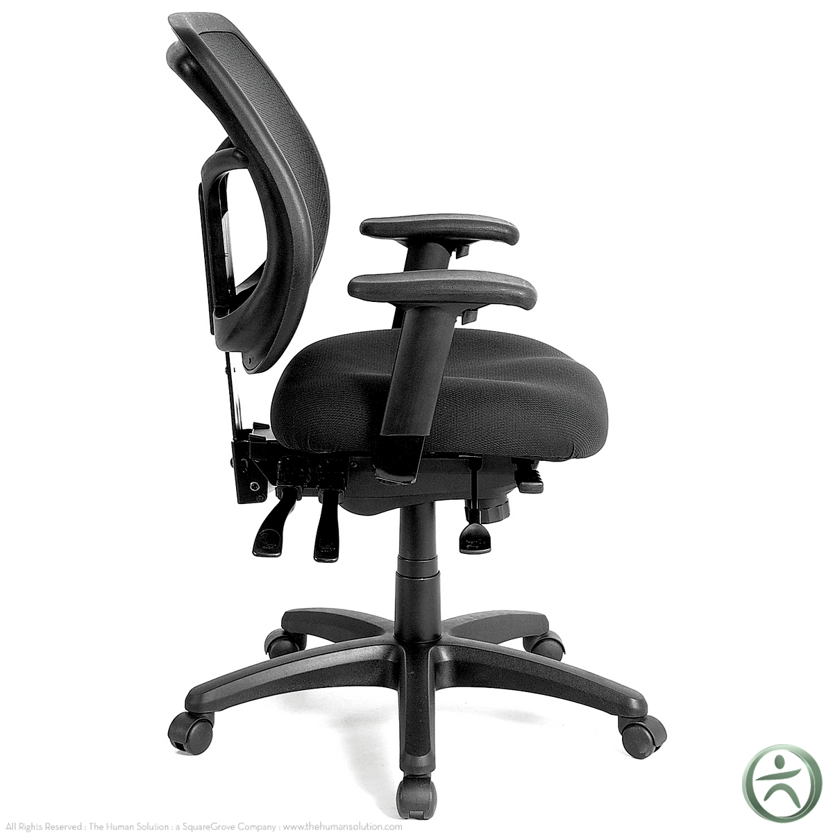 Office Chairs Raynor Office Chairs