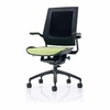 Raynor Bodyflex Task Chair