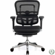 Raynor Ergo Elite Chair ME5ERGLTLOW