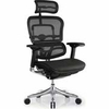 Raynor Ergo Elite Chair with Headrest ME22ERGLT