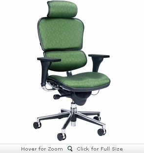 Raynor Ergohuman Chair -  Custom Fabric Chair with Headrest CU9ERG