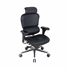 Raynor Ergohuman Chair -  Leather Chair with Headrest LE9ERG