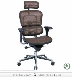 Raynor Ergohuman Chair ME7ERG - Mesh with Headrest