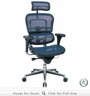 Raynor Ergohuman Chair - Mesh, High-Back w/ Headrest ME7ERG