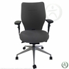 Raynor Eurotech Evo Chair