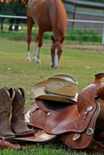 How to care for your saddle