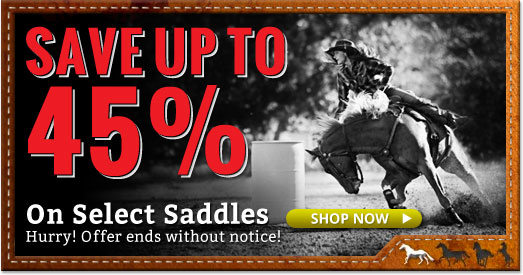 Saddle Sale